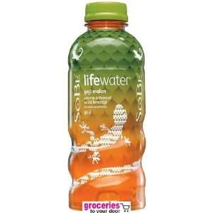 SoBe Lifewater Go ji Goji Melon, 20 oz: Grocery & Gourmet Food