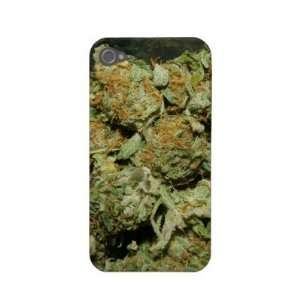 Mango Kush iPhone4 Case Iphone 4 Case Cell Phones