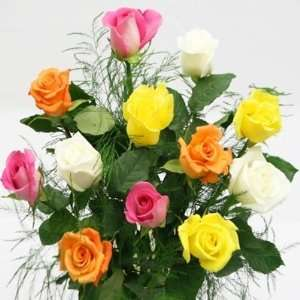 Rainbow Roses Bouquet  Grocery & Gourmet Food