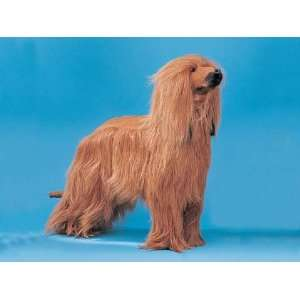 XX Large Afghan Dog Puppy Decoration Statue Model