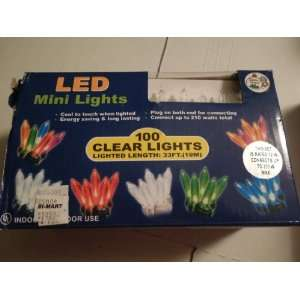 LED Multi Colored Mini Lights . 100 Per String with