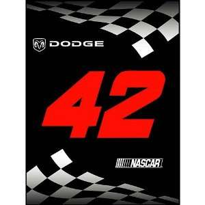 #42 Jamie McMurray 60x80 Winners Circle Collection