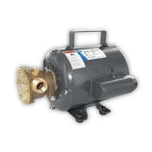 High Quality Jabsco Bronze AC Motor Pump Unit   115v