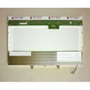 DELL MN906 LAPTOP LCD SCREEN 12.1 WXGA CCFL DUO