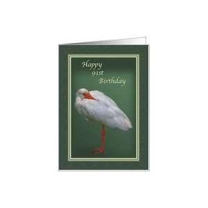 Birthday, 91st, White Ibis Bird Card Toys & Games
