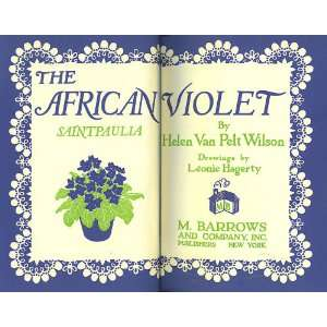 The African Violet Americas Favorite House Plant H.V.P