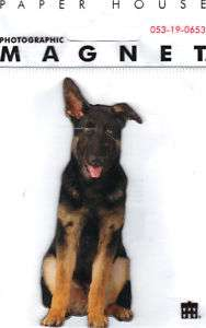 GERMAN SHEPHERD Dog Magnet Photographic Looks Real CUTE