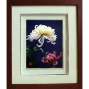 Framed Chinese Silk Embroidery White Chrysanthemum 11x12