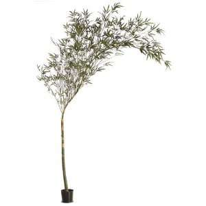 Allstate LTB786 GR 10 ft. Bamboo Tree Green  Case of 1