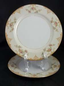 Jyoto Hand Painted Japan 2 Dinner Plates Floral Swags Gold Trim