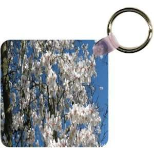 Cherry Blossom Tree Branches Art Key Chain   Ideal Gift