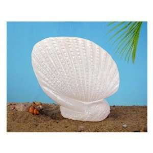 Ceramic Clam Shell in White   Contemporary Style