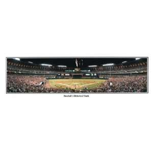 MLB St. Louis Cardinals Stadium Baseballs Historic Mark
