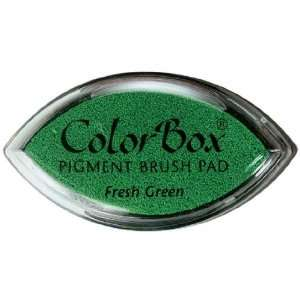 COLORBOX CATS EYE FRESH GREEN Patio, Lawn & Garden