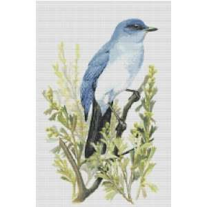 Nevada State Bird and Flower Counted Cross Stitch Pattern